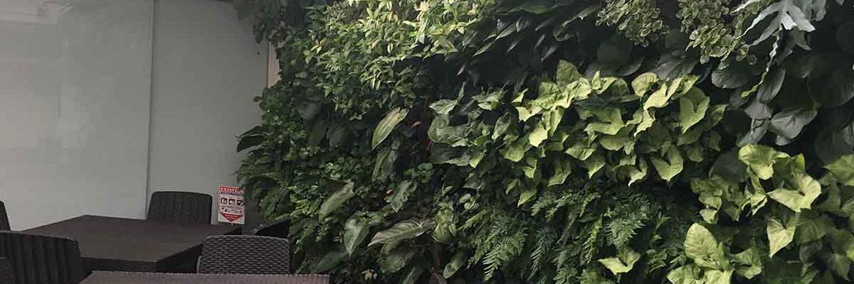jardin metro cuadrado