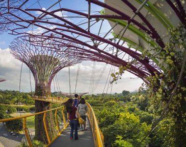 Jardínes verticales Singapur