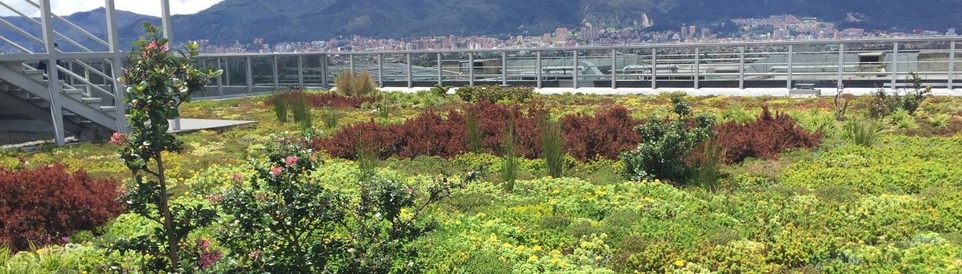 Techos Verdes Bogotá